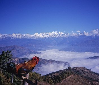 Nagarkot Hill Station